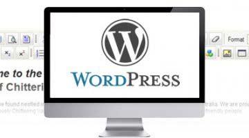 WordPress, lider para el desarrollo web de diseñadores y Blogueros